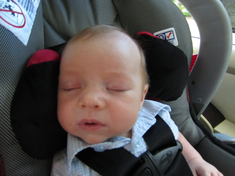 Snoozin in the Car Seat